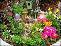 Edible Landscaping and Fairy Gardens | The Fruit Doctor