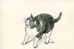 Cat original drawing  P012November2015 by kushun55 on Etsy