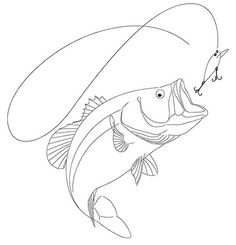 Drawing of a Largemouth Bass on Behance Easy Fish Drawing, Fish Drawings, Pencil Art Drawings, Animal Drawings, Art Sketches, Fish Drawing Outline, Foto Software, Pyrography Patterns, Fishing Pictures