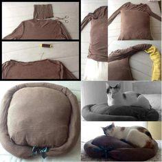 Cómo construir casa de cartón para gatos paso a paso. - Serexistencialdelalma. Asiento reciclado pasó a paso para tu mascota doméstica