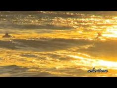 Gary Moore-The Prophet. - YouTube