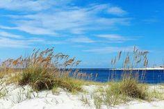 TGIF Beachlife - Orange Beach, Al.