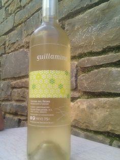 #avuitastem un Gillamina, 2008, Costers del Segre