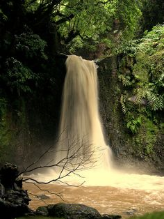 Waterfall in Azores, Portugal