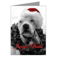 From Bad Rap Rescue for Pit  Bulls