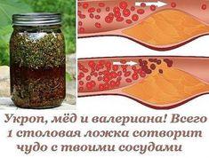 Укроп, мёд и валериана! Всего 1 столовая ложка сотворит чудо с твоими сосудами.   Простые советы