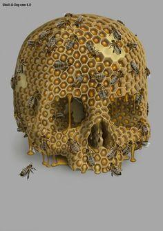 Barry Thomson created this Honey Skull using Photoshop.
