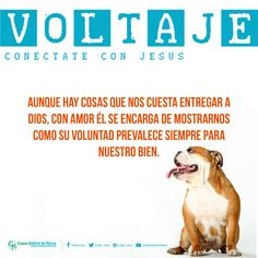 Jesús se encarga de mostrarnos cómo su voluntad prevalece siempre para nuestro bien. http://devocional.casaroca.org/jv/19ene #ConétacteConJesús.