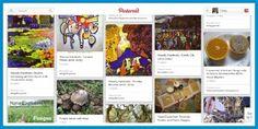 A Fungus Among Us Pinterest Board