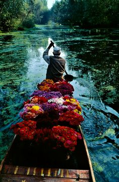 Flower seller in Lake Dal, Kashmir, India 1986 ~ by Steve McCurry