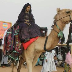 """Tamasheq Culture-AgNa in Kel Tamas Indiana, Tuareg People, The Lost Sheep, African Countries, Camels, African Beauty, Ghana, Character Inspiration, Folk"
