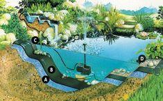 vattendamm i trädgård