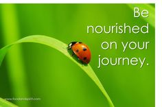 """""""Be nourished on your journey.""""  -Food & Spirit with Dr. Deanna Minich"""