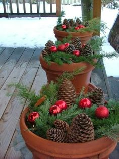 Top pots with greenery, bulbs, and pine cones.