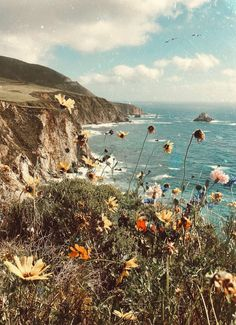 Bixby — a map of dreams Cute Backgrounds, Aesthetic Backgrounds, Aesthetic Iphone Wallpaper, Cute Wallpapers, Wallpaper Backgrounds, Aesthetic Wallpapers, Nature Aesthetic, Flower Aesthetic, Photo Wall Collage