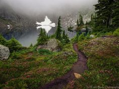 Foggy Morning at Copper Lake. This recently processed image was taken last August during a one week backpacking trip into the northern part of the North Cascades National Park.