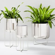 There are various options here that you can take to protect your metal flower pots. Wood Planter Box, Metal Planters, Outdoor Planters, Ceramic Planters, Indoor Outdoor, Small Furniture, Modern Furniture, Furniture Ads, Cheap Furniture