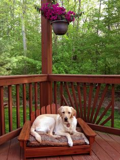 WelcomePup.com does not sell dog beds but found this adorable Adirondack dog bed for Melba at The Company Store. It comes in Chestnut (pictured) and White and is oh so adorable! Comes in one size. Melba just fits and she's a 1 yrs. old 50--55 lb. lab cross with LONG legs. Cushion sold separately.