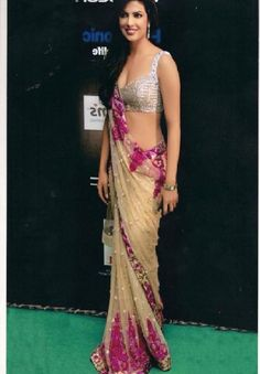 Google Image Result for http://fashtoday.com/wp-content/uploads/2012/07/latest-bollywood-style-saree-2012.jpg