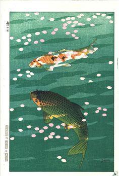 Kasamatsu Shiro - Koi (Carp)