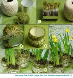 stunning natural centre pieces, using recycled cans. I wouldn't choose those flowers though. Via The Ecoist