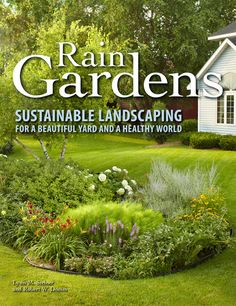 rain garden--sustainable landscaping