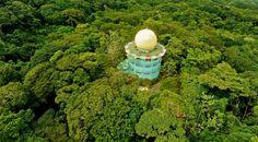 El Canopy Tower es un eco-lodge ubicado en un lugar privilegiado en las riberas del Canal de Panama, desde donde se pueden apreciar aves y otros tipos de especies a nivel del dosel del bosque.