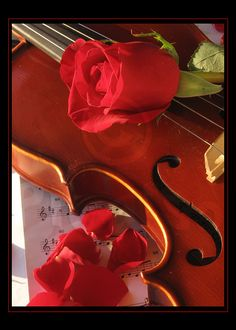 Chords Of Affection II By WayneBenedet On DeviantArt Human Voice The Roses Are