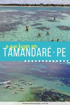Tamandaré, em Pernambuco, é mais que apenas a Praia dos Carneiros. Veja o que fazer e as principais atrações da cidade.