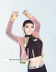 Cheetah 치타   Grazia Korea