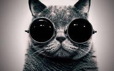 Call me Cat Lennon.
