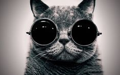 Call me Cat Lennon.