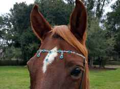 Blue Rhinestones Browband for Horse or Pony - Aqua Blue Horse Jewelry - Equine Bling Tack Jewelry- Gift for Horse Lover