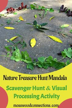 Nature-Treasure-Hunt-Mandala- Symmetry Activities, Nature Activities, Easter Activities, Educational Activities, Classroom Activities, Activities For Kids, Learning Games For Kids, Nature Crafts, Outdoor Fun