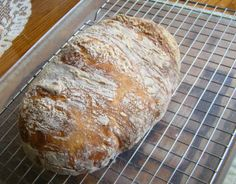 Classic San Francisco Sourdough Bread Recipe - Food.com