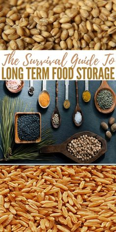The Survival Guide To Long Term Food Storage - These are troubling times indeed with economic, climatic, and social upheavals and wild gyrations of every type in every corner of our planet Emergency Food Supply, Emergency Preparation, Survival Food, Survival Prepping, Wilderness Survival, Emergency Preparedness, Survival Skills, Real Madrid, Canning Food Preservation