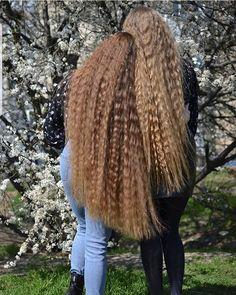Curls For Long Hair, Super Long Hair, Big Hair, Thick Hair, Long Blond, Long Brown Hair, Beautiful Long Hair, Layered Cuts, Hair Today