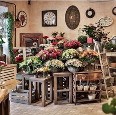 Flowers design shop 17 Best Ideas – Famous Last Words Flower Shop Decor, Flower Shop Design, Design Shop, Flower Designs, Flower Shop Displays, Florist Shop Interior, Café Exterior, Exterior Design, Flower Cafe