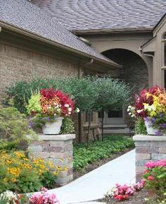 Home landscape planting design and management
