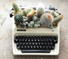averymadelinee ➹ cactus in a typewriter planter - so cute!
