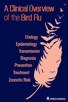 The clinical guide to understanding bird flu.