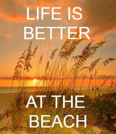 I Love The Beach, Beach Quotes, Tropical Vibes, Make Me Smile, Life Is Good, Coastal, Ocean, Passion, Good Things