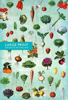 Kitchen Print Kitchen Decor Fruit & Vegetables Art Rustic Farmhouse Giclee Print on Cotton Canvas and Satin Photo Paper Home Wall Art. Kitchen Print Fruit & Vegetables Giclee Farmhouse Print on Paper Canvas Giclee print featuring Victorian illustration of Fruit & Vegetables in farmhouse kitchen aesthetic. Perfect touch for your kitchen or dining. This print is available on high quality 66lb/255gsm satin finish photo paper and (NEW!) premium 360gsm double woven cotton canvas. Printed...