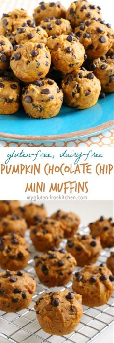 Gluten-free Pumpkin Chocolate Chip Mini Muffins (Dairy-free) Gluten-free Dairy-free Pumpkin Muffins with Chocolate Chips. Easy, freezer friendly recipe that's nut-free too! Mini Chocolate Chip Muffins, Pumpkin Chocolate Chips, Mini Muffins, Skinny Muffins, Baking Muffins, Dairy Free Baking, Dairy Free Recipes, Healthy Recipes, Cooking Recipes