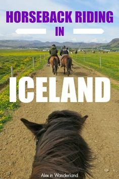 On a family trip to Iceland with my mom and sister, there was just one activity I INSISTED on doing--horseback riding through the gorgeous Icelandic countryside. | Alex in Wanderland