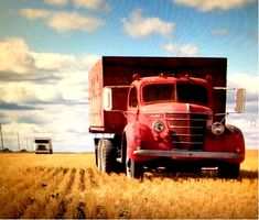 Denis Sauvageaux's working for the fourth generation of their family. International Harvester Truck, Farm Trucks, Vehicles, Car, Vehicle, Tools