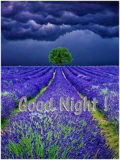 Something beautiful as you go to sleep