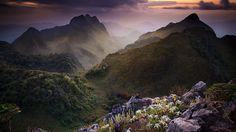 Download Wallpaper 1920x1080 Grass, Rocks, mountains Full HD 1080p HD Background
