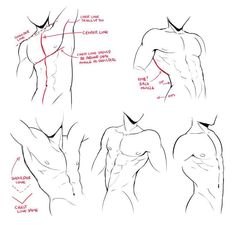 Ideas For Drawing Reference Poses Male Comic Anatomy Sketches, Anatomy Drawing, Anatomy Art, Art Sketches, Art Drawings, Human Figure Drawing, Body Drawing, Drawing Base, Drawing Reference Poses