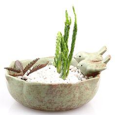 Amazon.com: NCYP Vintage Ceramic Pottery 2 Birds on Lotus Flower Pot Planter for Succulents Moss Fern with drainage hole Medium Size: Patio, Lawn & Garden